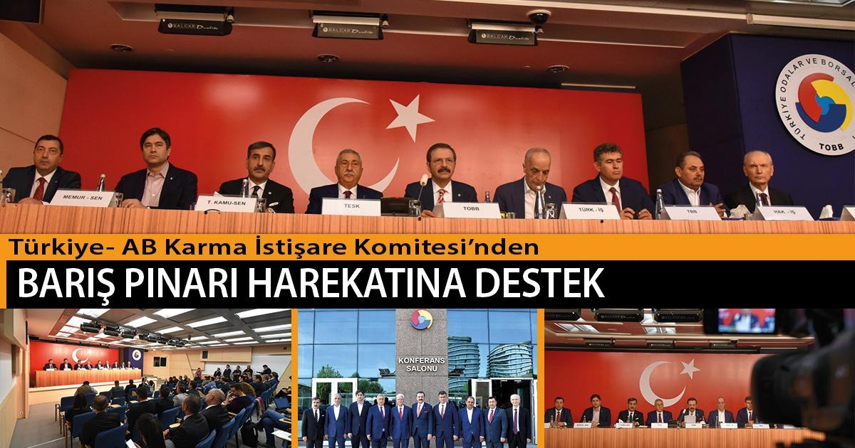 Türkiye- AB Karma İstişare Komitesi'nden, Barış Pınarı Harekatına Destek